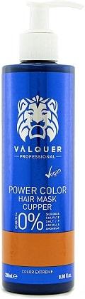 Mascarilla Power Color cabellos teñidos